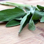 How to Fry Sage