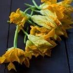 Ricotta Stuffed Squash Blossoms
